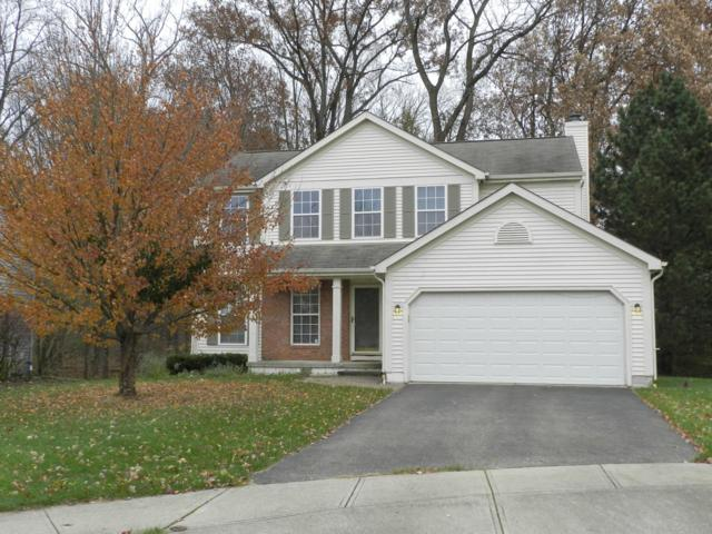5400 Bullfinch Drive, Westerville, OH 43081 (MLS #218042596) :: Shannon Grimm & Partners