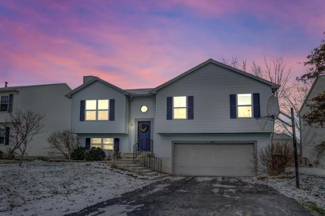 5857 Saucony Drive, Hilliard, OH 43026 (MLS #218043439) :: Signature Real Estate