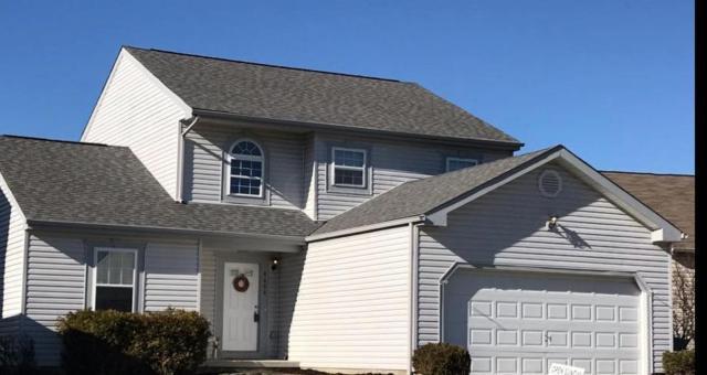 8608 Greylag Street, Blacklick, OH 43004 (MLS #218043475) :: Signature Real Estate