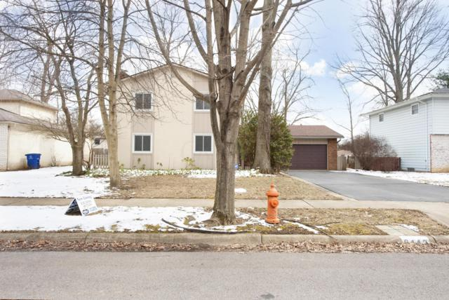 6442 Johnanne Street, Columbus, OH 43229 (MLS #219001133) :: RE/MAX ONE