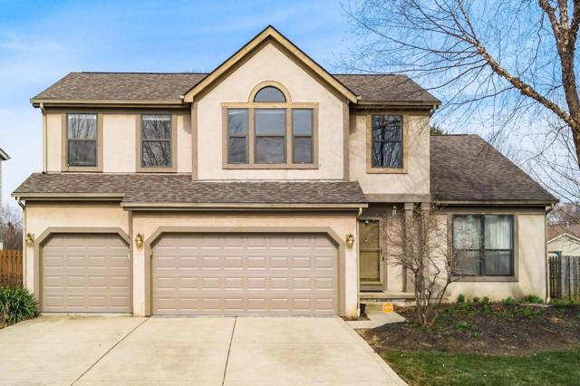 4799 Richland Drive, Columbus, OH 43230 (MLS #219001879) :: Shannon Grimm & Partners