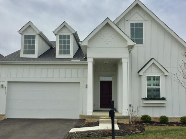 7019 Foreland Lane, Dublin, OH 43016 (MLS #219002227) :: RE/MAX ONE