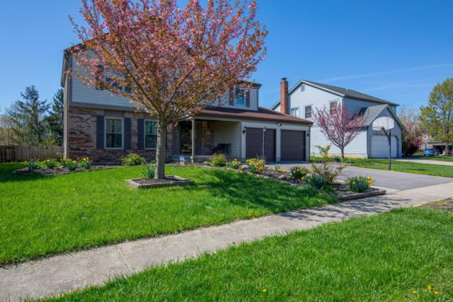 5641 Oldwynne Road, Hilliard, OH 43026 (MLS #219003306) :: Keller Williams Excel
