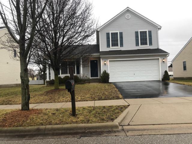 444 Wheatfield Drive, Delaware, OH 43015 (MLS #219003843) :: Susanne Casey & Associates