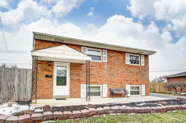 615 Hillsdale Drive, West Jefferson, OH 43162 (MLS #219004868) :: Susanne Casey & Associates