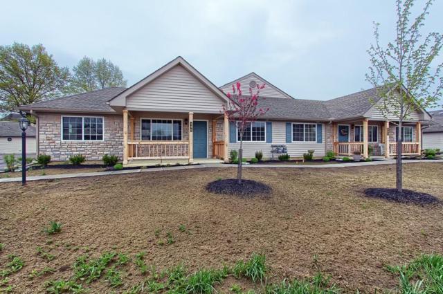 146 Pioneer Circle, Pickerington, OH 43147 (MLS #219006821) :: Huston Home Team