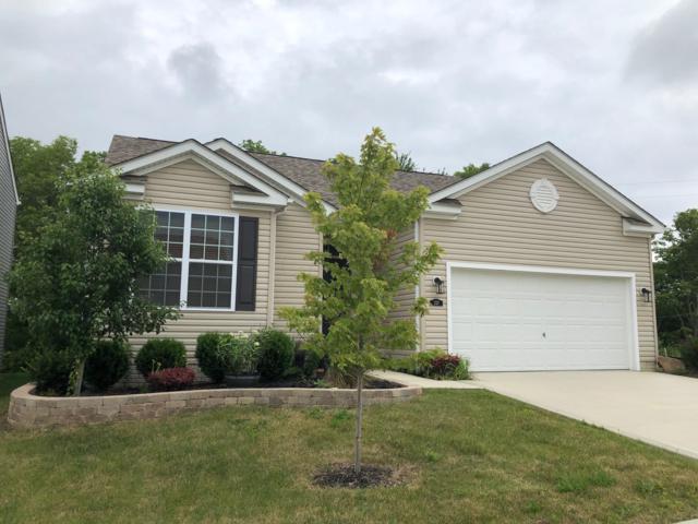 237 Faulkner Drive, Lithopolis, OH 43136 (MLS #219007117) :: The Raines Group