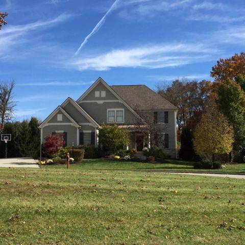 5640 Jeffries Court, Westerville, OH 43082 (MLS #219007265) :: RE/MAX ONE