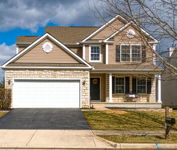 46 Gold Meadow Drive, Lewis Center, OH 43035 (MLS #219008432) :: Brenner Property Group | Keller Williams Capital Partners