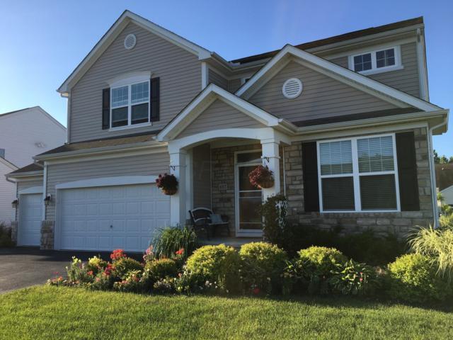 697 Stallion Way, Marysville, OH 43040 (MLS #219008565) :: Brenner Property Group | Keller Williams Capital Partners