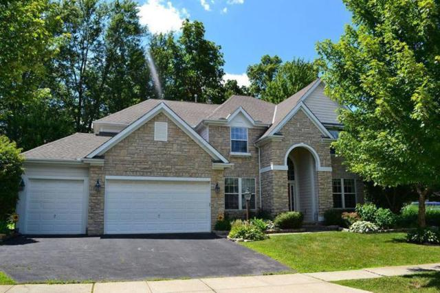 8514 Northbluff Lane, Powell, OH 43065 (MLS #219008714) :: BuySellOhio.com