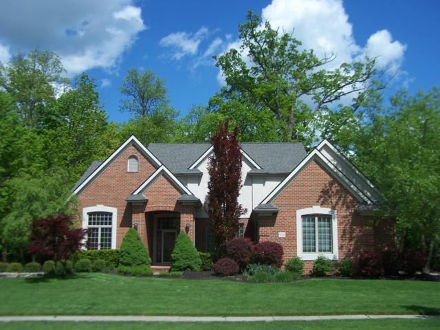 8330 Chippenham Drive, Dublin, OH 43016 (MLS #219010506) :: RE/MAX ONE