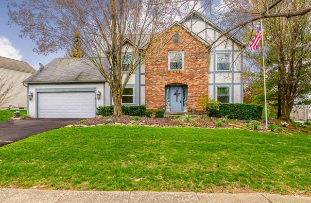 538 Whitson Drive, Columbus, OH 43230 (MLS #219010619) :: RE/MAX ONE