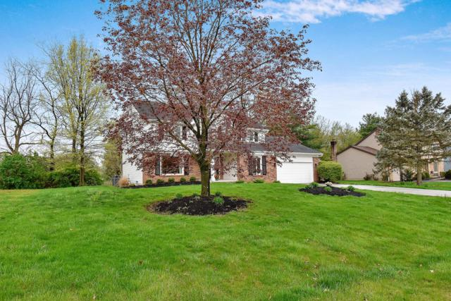 9835 Hounsdale Drive, Pickerington, OH 43147 (MLS #219011118) :: Brenner Property Group | Keller Williams Capital Partners
