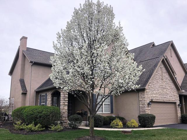 8161 Hillingdon Drive, Powell, OH 43065 (MLS #219011555) :: Brenner Property Group | Keller Williams Capital Partners