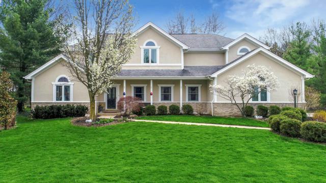 5736 Mist Flower Lane, Westerville, OH 43082 (MLS #219011568) :: Signature Real Estate