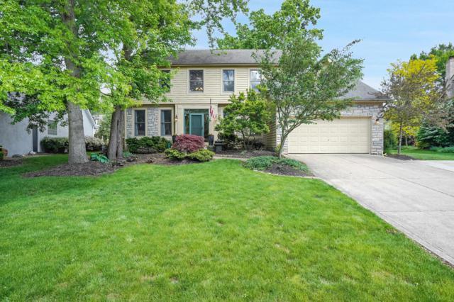 930 Old Pine Drive, Columbus, OH 43230 (MLS #219011873) :: Berkshire Hathaway HomeServices Crager Tobin Real Estate