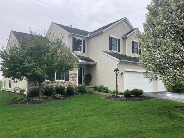 1338 Sunflower Street, Lewis Center, OH 43035 (MLS #219013241) :: The Clark Group @ ERA Real Solutions Realty