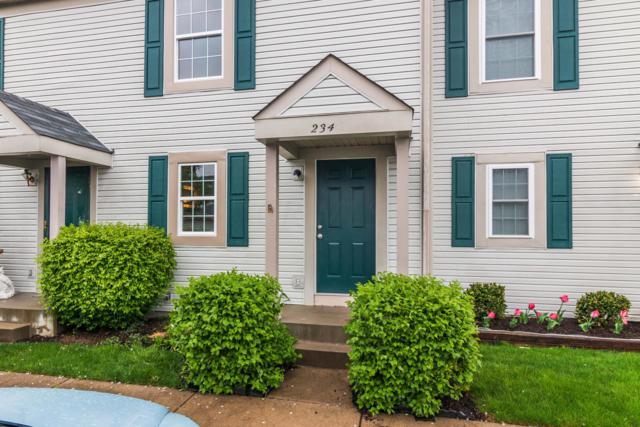 234 Macfalls Way, Blacklick, OH 43004 (MLS #219013601) :: Signature Real Estate
