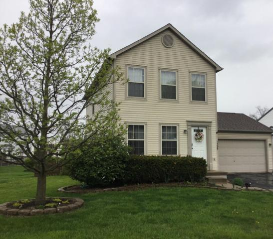 1395 Dillingham Court, Columbus, OH 43228 (MLS #219013743) :: RE/MAX ONE
