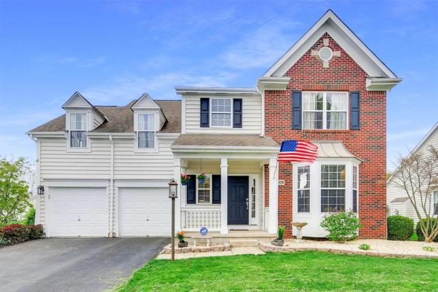 6558 Hermitage Drive, Westerville, OH 43082 (MLS #219014577) :: RE/MAX ONE