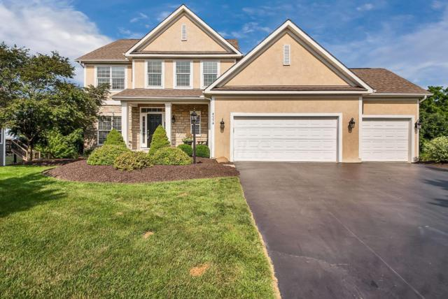4774 Wicklow Court, Galena, OH 43021 (MLS #219014808) :: Signature Real Estate