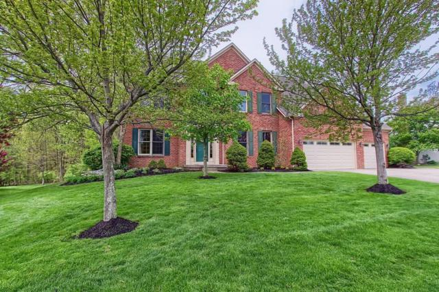 8793 Glassford Court S, Dublin, OH 43017 (MLS #219014867) :: The Clark Group @ ERA Real Solutions Realty
