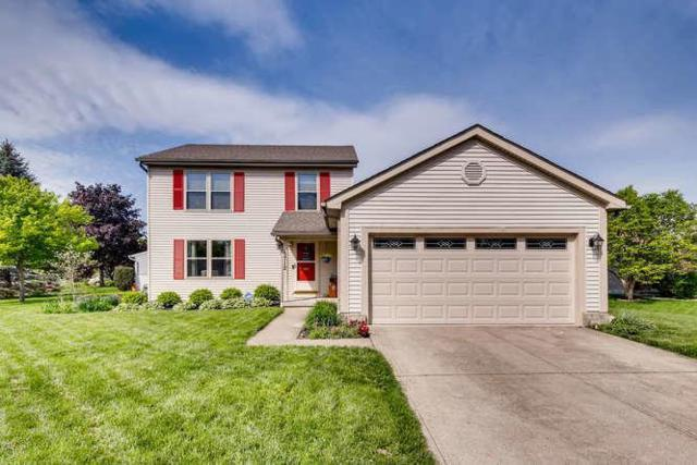 5712 Converse Court, Hilliard, OH 43026 (MLS #219014983) :: Signature Real Estate