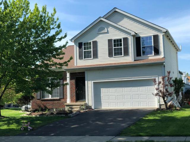 8532 Wildomar Avenue, Reynoldsburg, OH 43068 (MLS #219015427) :: Berkshire Hathaway HomeServices Crager Tobin Real Estate