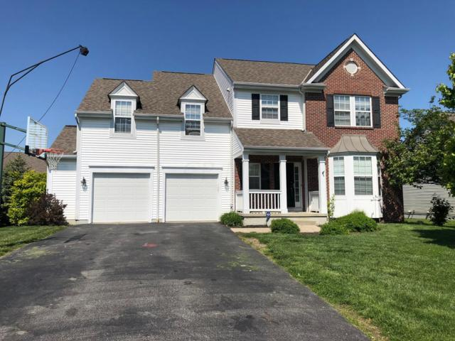 7207 Connor Avenue, Canal Winchester, OH 43110 (MLS #219015966) :: Signature Real Estate