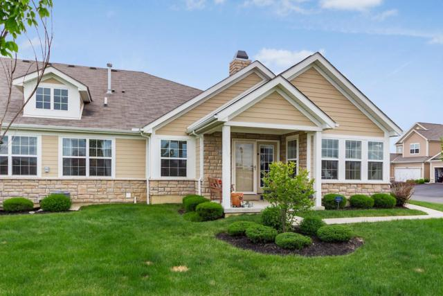 6858 Kinsale Lane, Powell, OH 43065 (MLS #219016920) :: RE/MAX ONE