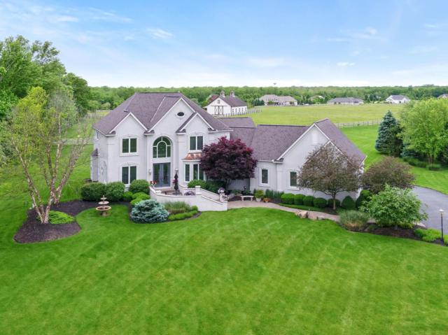 450 Trillium Drive, Galloway, OH 43119 (MLS #219017505) :: Berkshire Hathaway HomeServices Crager Tobin Real Estate