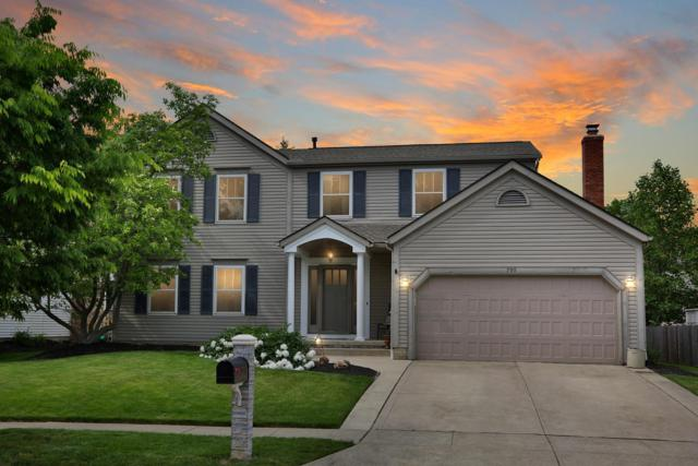 790 Mountainview Drive, Westerville, OH 43081 (MLS #219017737) :: Signature Real Estate