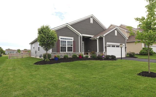 599 Buena Park Drive, Delaware, OH 43015 (MLS #219017883) :: Shannon Grimm & Partners