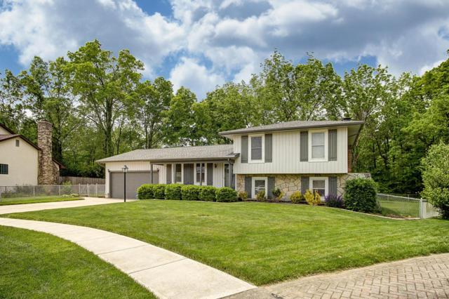 1585 Carrigallen Avenue, Columbus, OH 43228 (MLS #219017922) :: The Clark Group @ ERA Real Solutions Realty