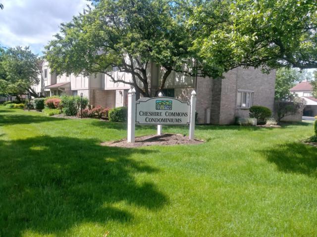 1951 Rockdale Drive #31, Columbus, OH 43229 (MLS #219017927) :: Brenner Property Group | Keller Williams Capital Partners