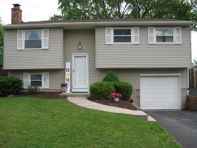 5772 Saffron Avenue, Galloway, OH 43119 (MLS #219018066) :: The Clark Group @ ERA Real Solutions Realty