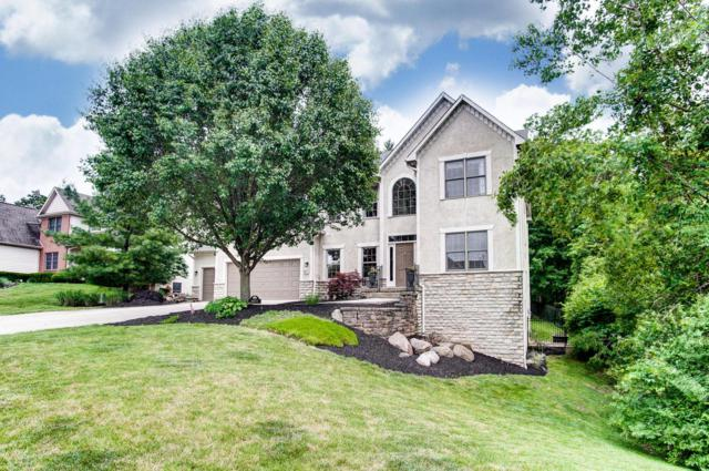 6077 Highland Hills Drive, Westerville, OH 43082 (MLS #219019042) :: Huston Home Team