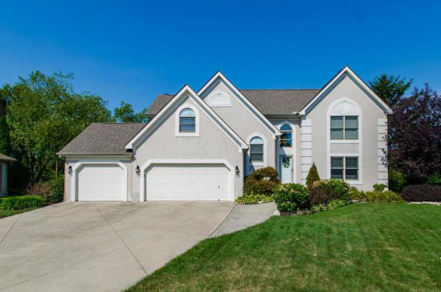 1025 Ridge Crest Drive, Columbus, OH 43230 (MLS #219019280) :: Core Ohio Realty Advisors