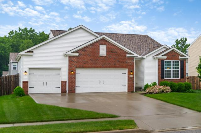 8801 Patterson Loop, Reynoldsburg, OH 43068 (MLS #219019327) :: The Clark Group @ ERA Real Solutions Realty