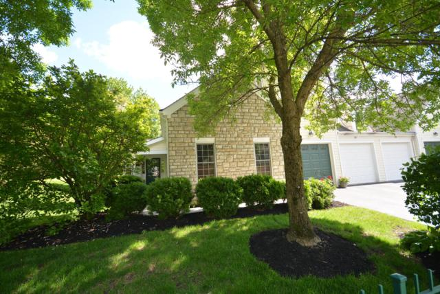 796 Poppy Hills Drive, Blacklick, OH 43004 (MLS #219019574) :: Keith Sharick | HER Realtors