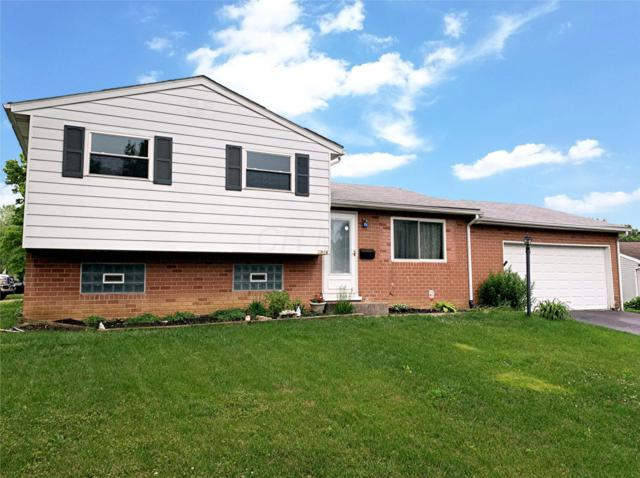 5916 Balboa Road, Westerville, OH 43081 (MLS #219019651) :: The Clark Group @ ERA Real Solutions Realty