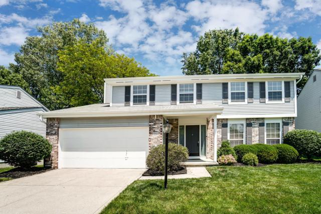 5556 Mountain Springs Court, Columbus, OH 43230 (MLS #219020163) :: Signature Real Estate