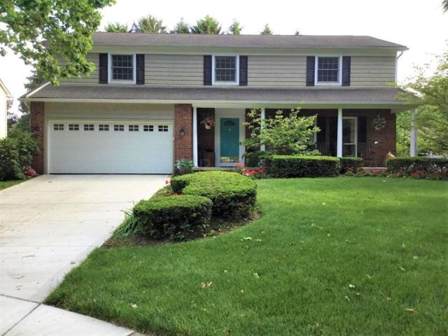 6875 Kilt Court, Worthington, OH 43085 (MLS #219020329) :: Signature Real Estate