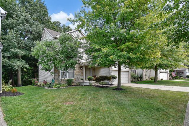 7858 Blacklick View Drive, Blacklick, OH 43004 (MLS #219020517) :: Huston Home Team