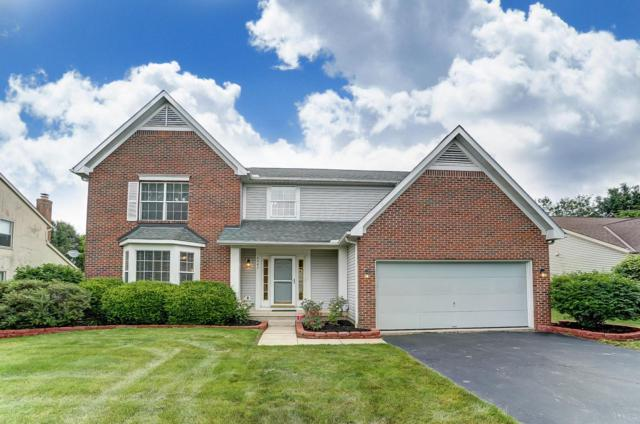 6445 Morningside Drive, Lewis Center, OH 43035 (MLS #219020733) :: The Raines Group