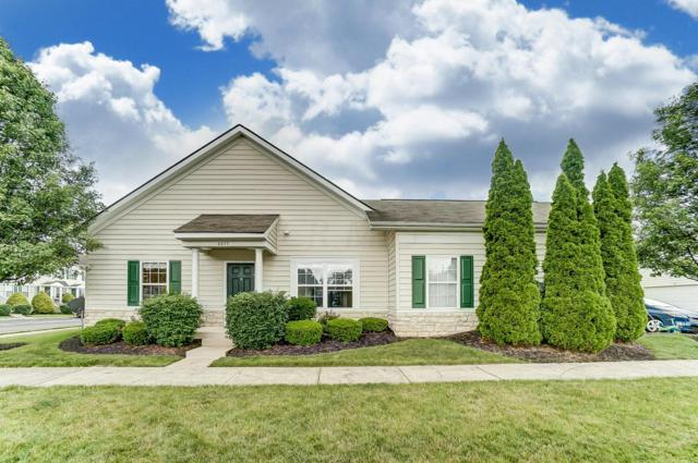 6035 Avatar Drive, New Albany, OH 43054 (MLS #219021001) :: Signature Real Estate