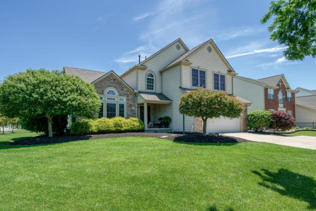 6210 Temple Ridge Drive, Hilliard, OH 43026 (MLS #219021019) :: Signature Real Estate