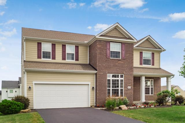 6253 Baumeister Drive, Hilliard, OH 43026 (MLS #219022229) :: Signature Real Estate