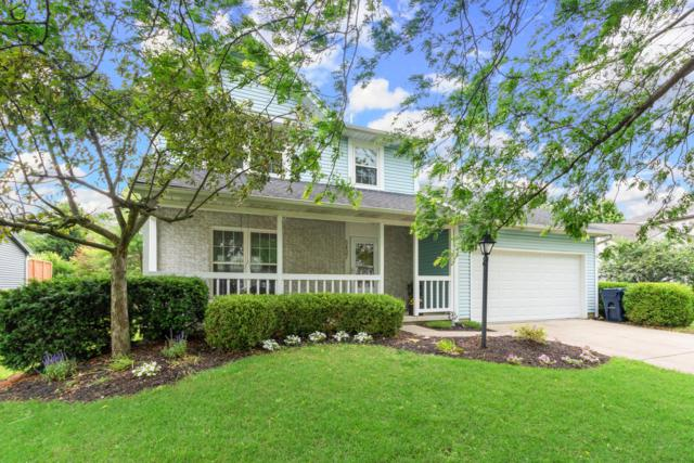 5437 Edie Drive, Hilliard, OH 43026 (MLS #219022437) :: Signature Real Estate